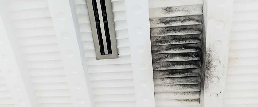 Mold And Mildew in HVAC